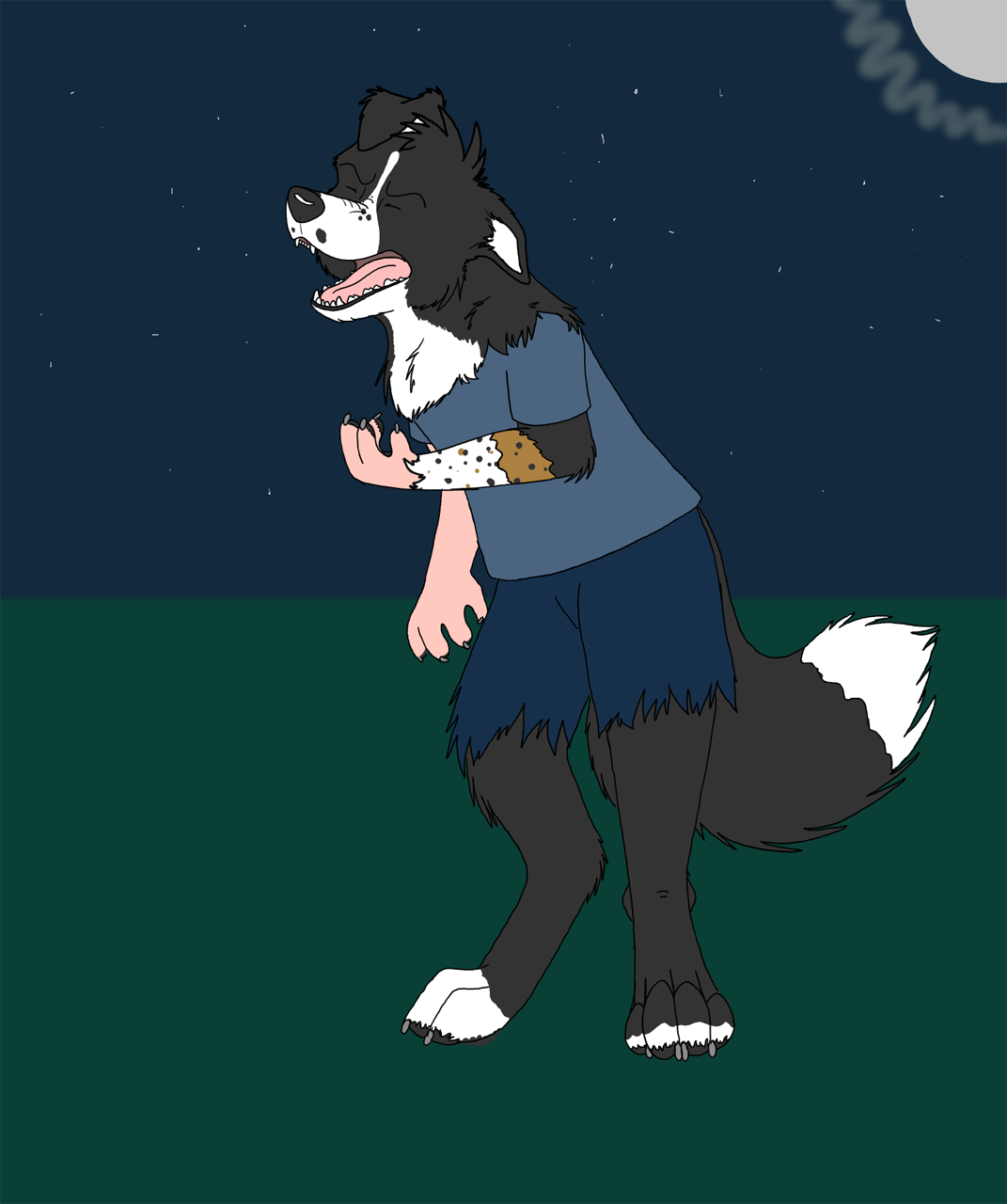 werebcollie by Edthebordercollie