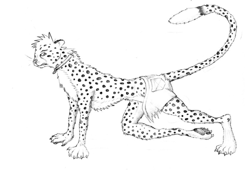 Cheetah-Guy by Fenchurch