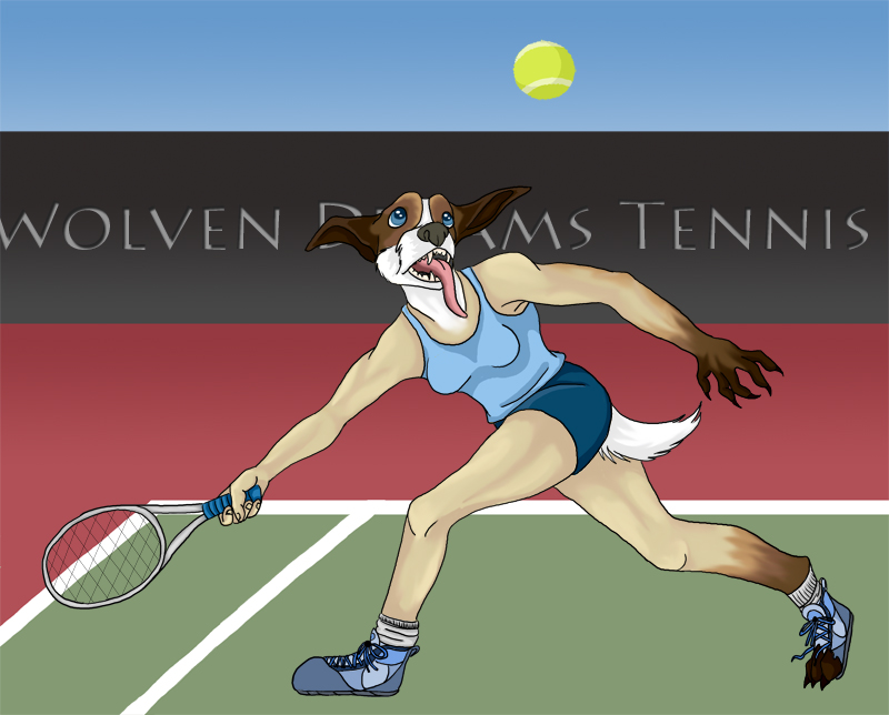 Tennis match by Skychaser