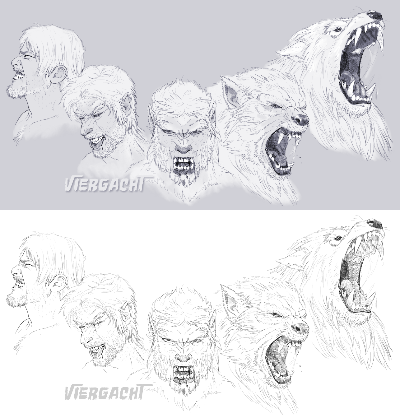 Werewolf Sequence 2 by Viergacht